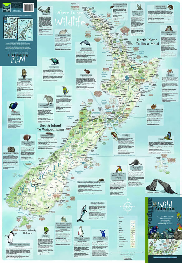 New Zealand Wall Maps Including North And South Island Maps